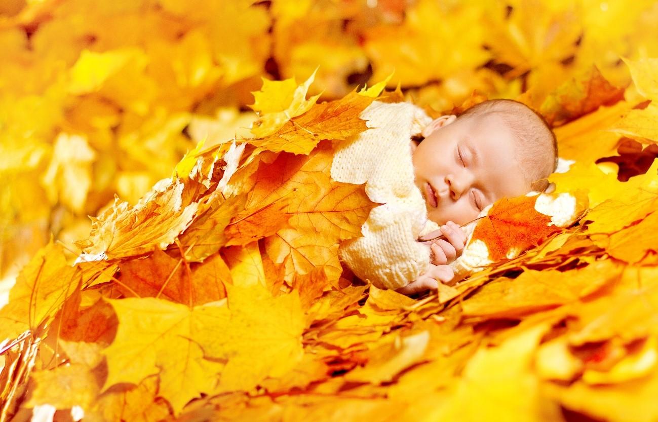 落ち葉にくるまって眠る赤ちゃん