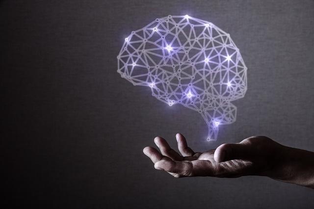 脳のホログラム
