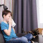 Junge reagiert allergisch auf Katzen